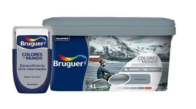 Bodegón - bote - pintura - escandinavia - gris - intermedio - colores - del - mundo - Bruguer