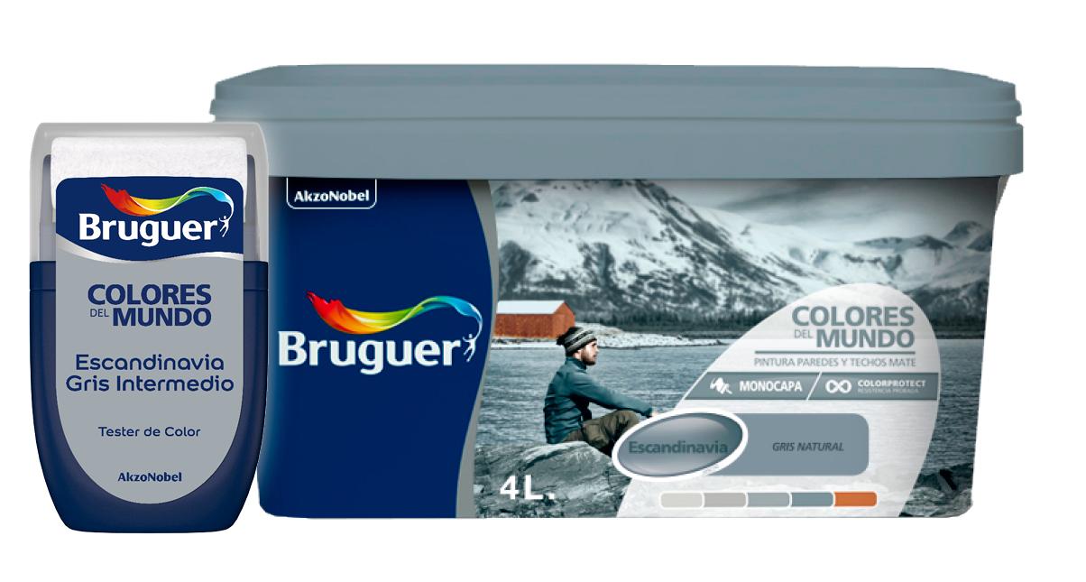 Bodegón - fondo - transparente - bote - pintura - escandinavia - gris - intermedio - colores - del - mundo - Bruguer