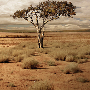 foto - Kenia - página - colores - del -mundo - Bruguer