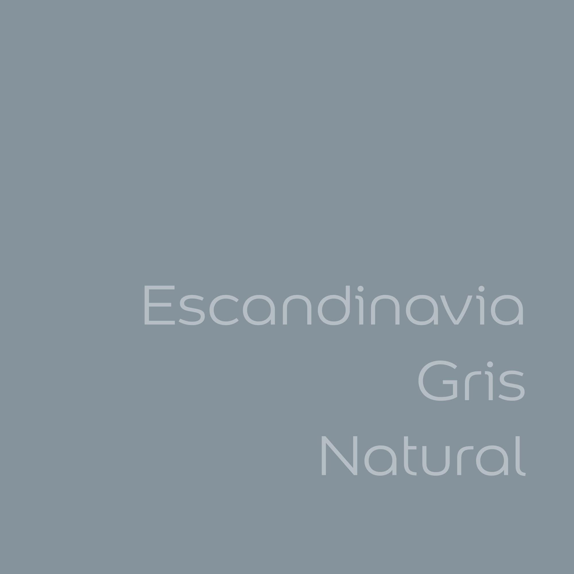 tester de color de pintura bruguer cdm escandinavia gris natural color