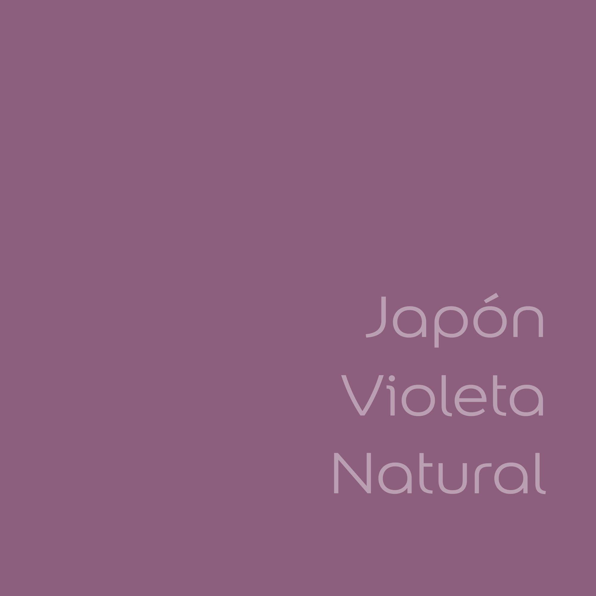 tester de color de pintura bruguer cdm japon violeta natural color