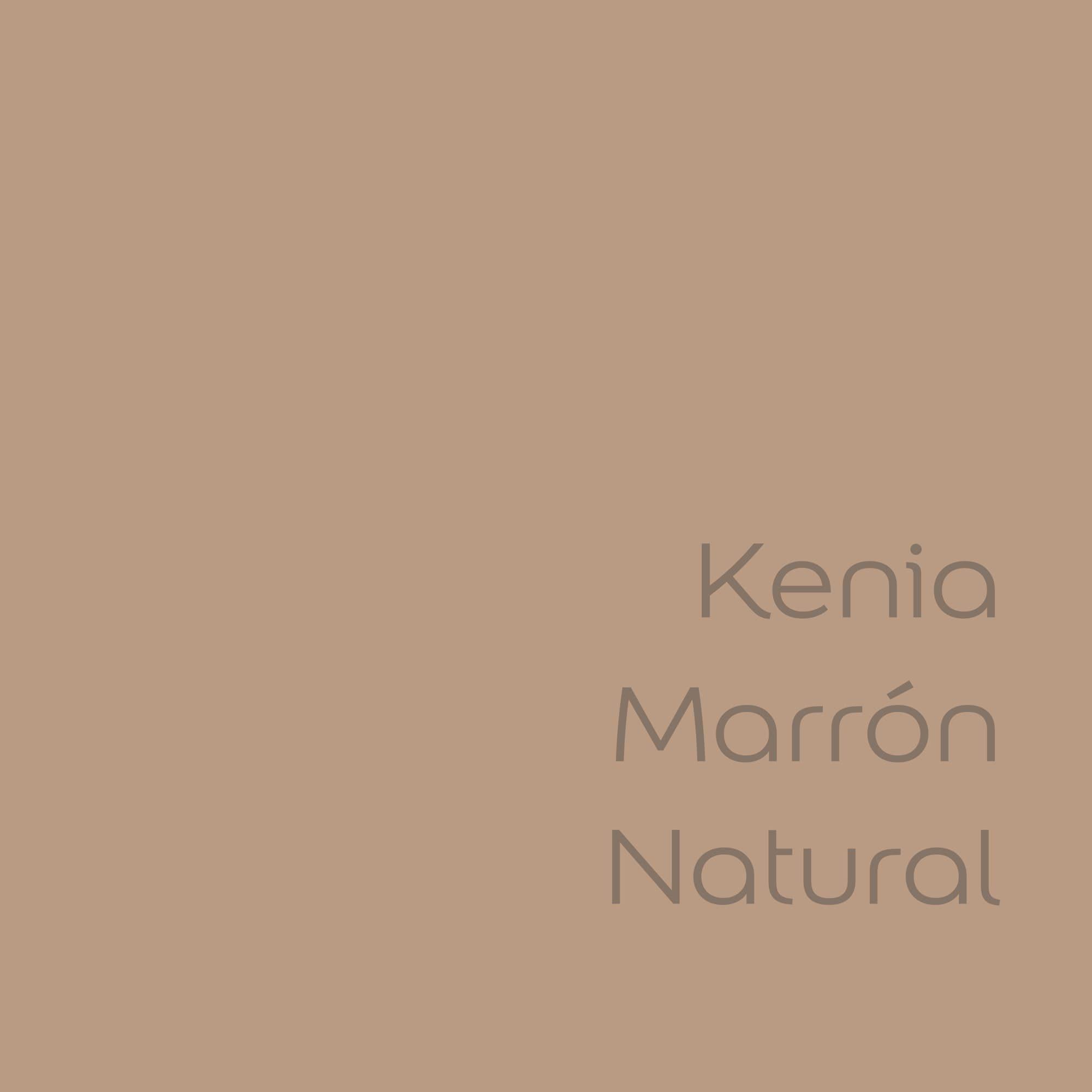 tester de color de pintura bruguer cdm kenia marron natural color