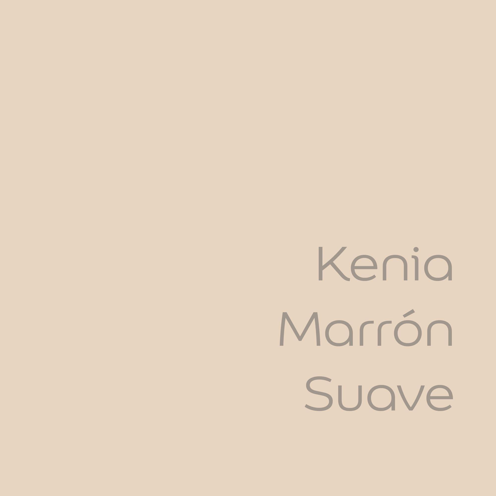 tester de color de pintura bruguer cdm kenia marron suave color