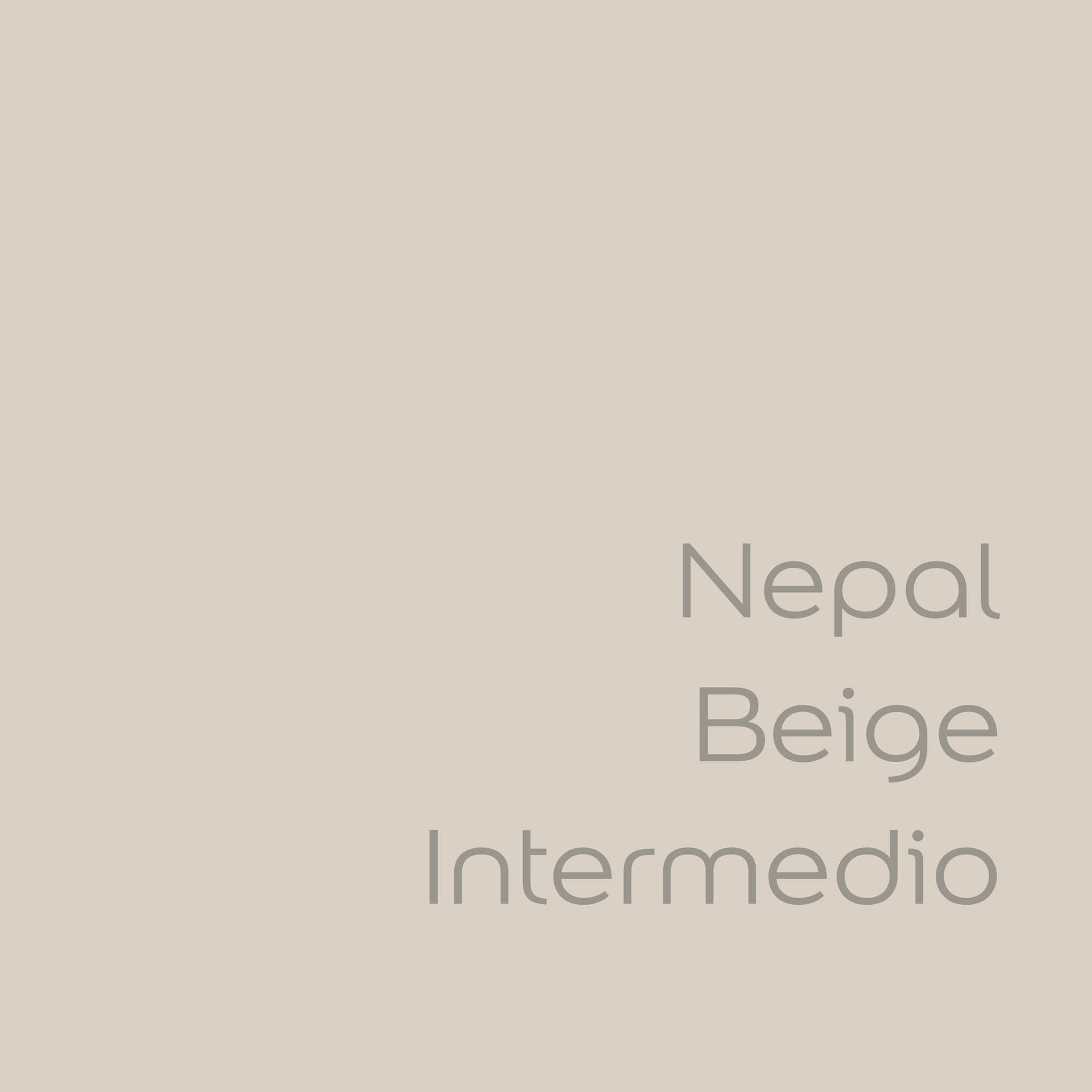 tester de color de pintura bruguer cdm nepal beige intermedio color