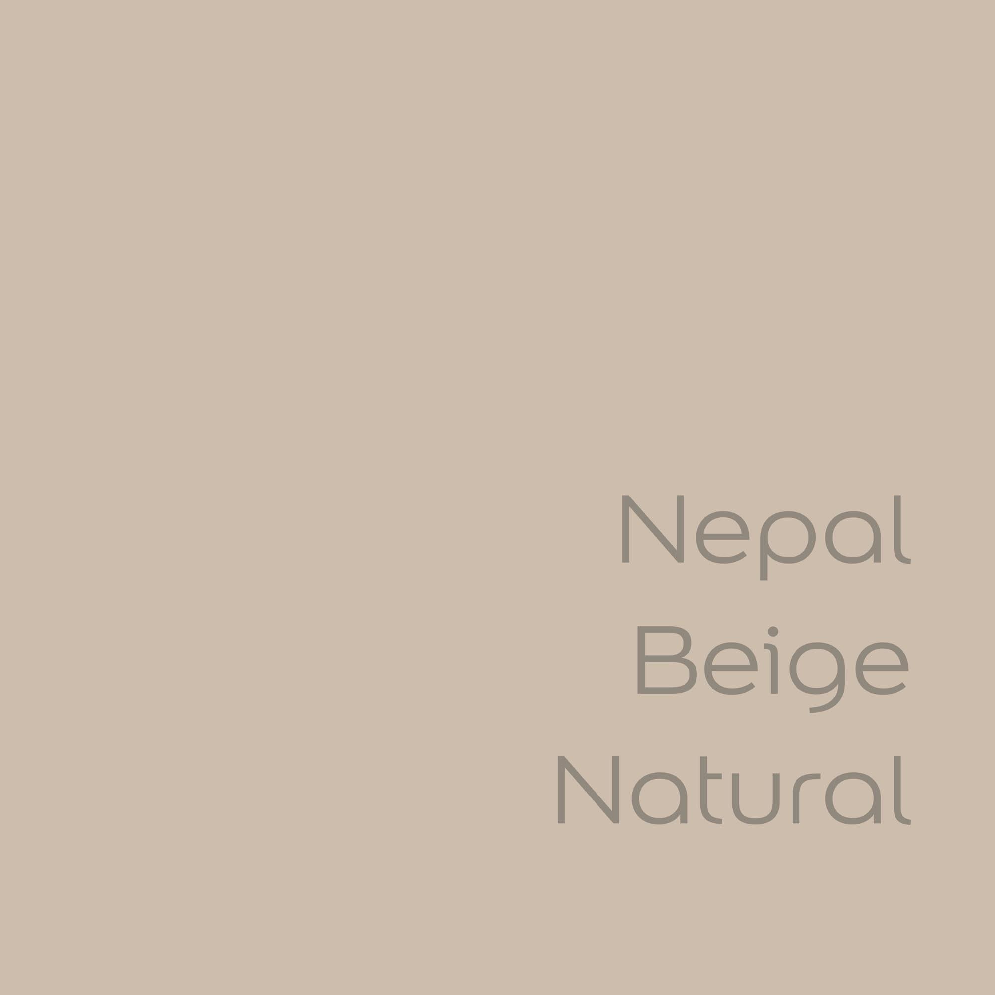 tester de color de pintura bruguer cdm nepal beige natural color