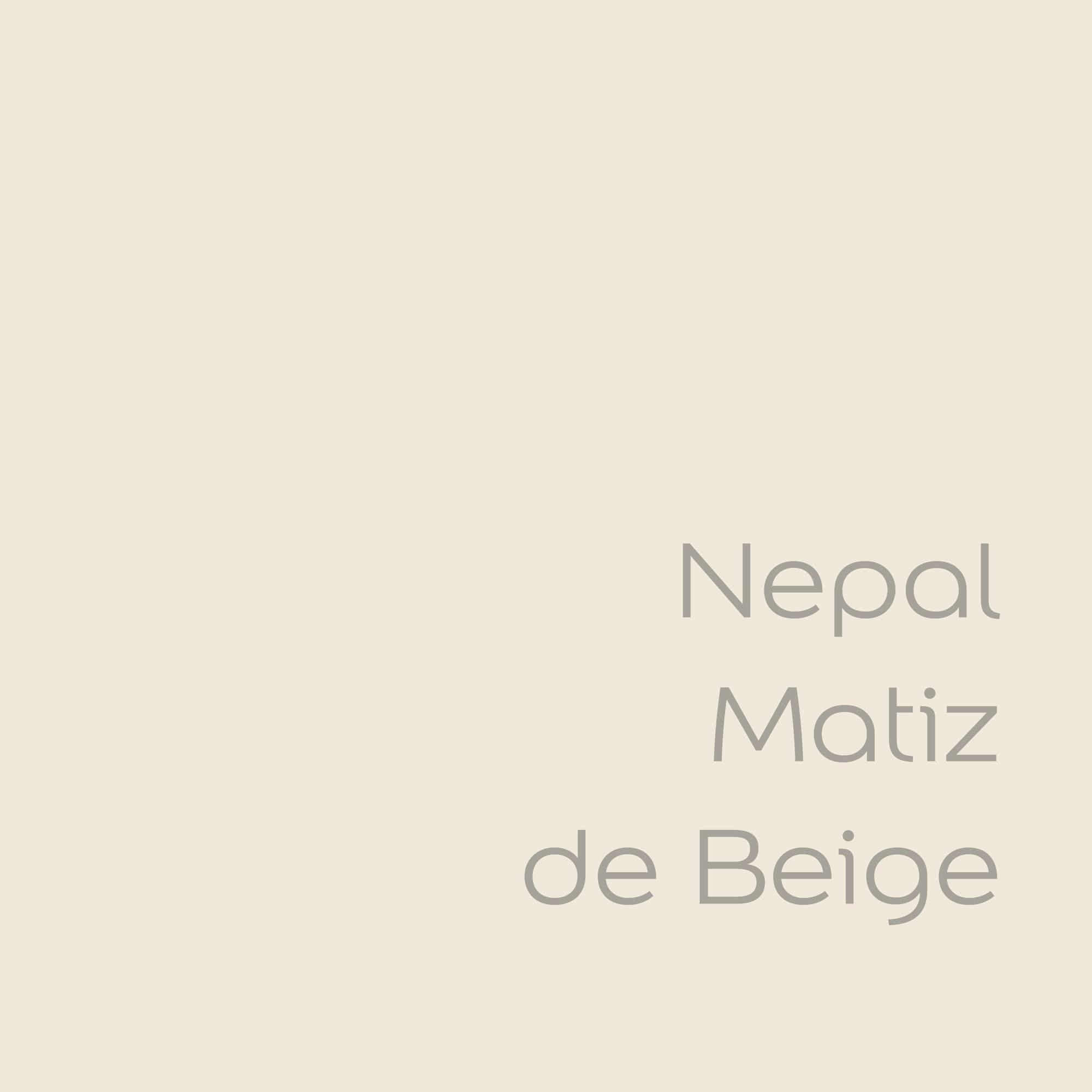tester de color de pintura bruguer nepal matiz de beige color