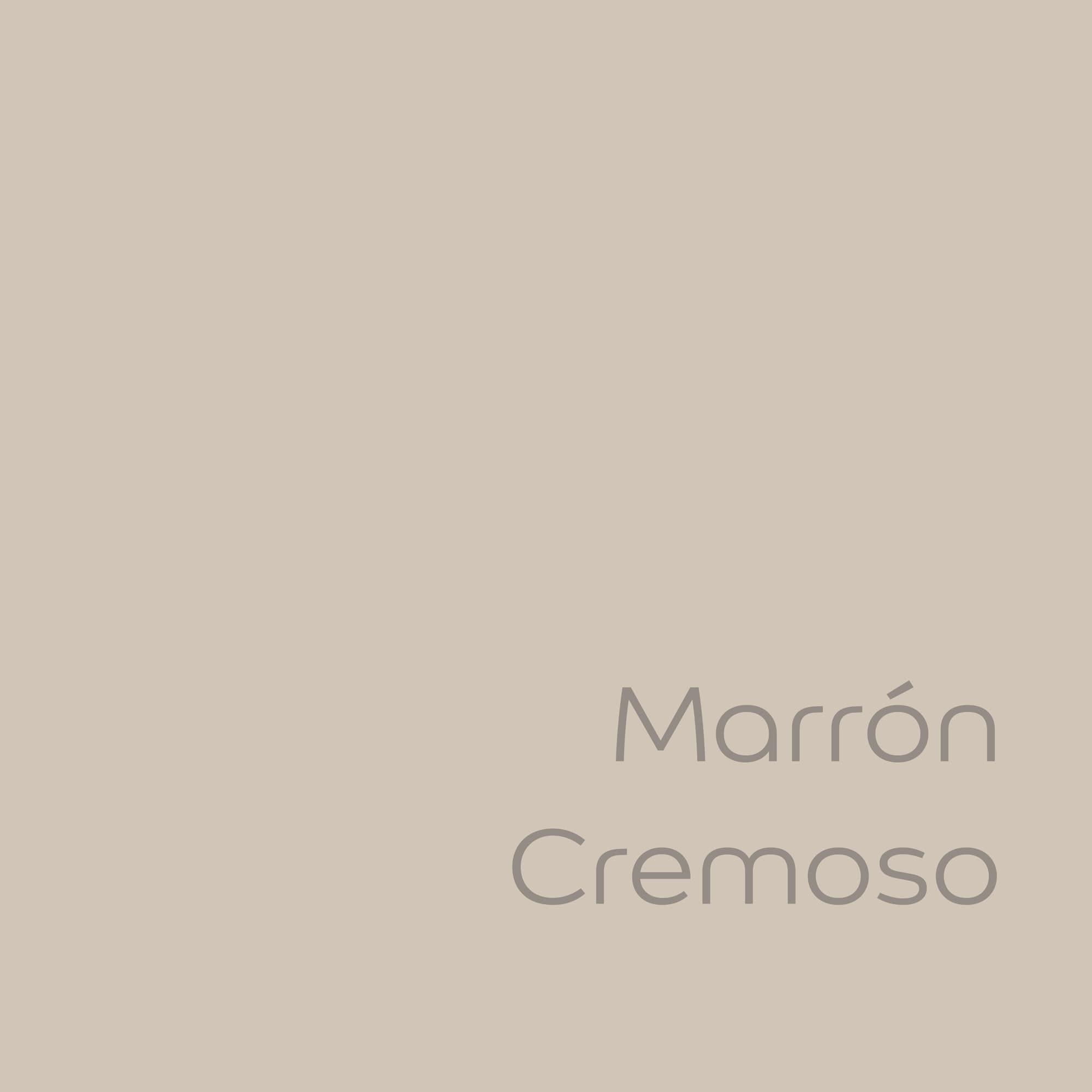 tester de pintura de color bruguer ultraresist marron cremoso color